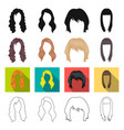 model style wig and other web icon in different vector image vector image