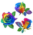 multicolored roses on white background vector image