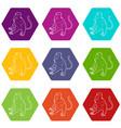 nasalis monkey icons set 9 vector image