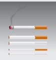 set of different burning cigarette vector image