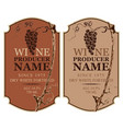 set of wine labels with grape vine and grape bunch vector image vector image