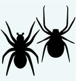 Set spider icon vector image