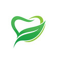 tooth dental eco logo design image vector image vector image