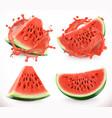 watermelon juice fresh fruit 3d realistic icon vector image
