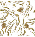 wheat with grain seamless botanical pattern vector image