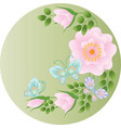 wild rose flowers and butterflies vector image