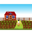 Area with vegetable garden vector image