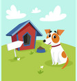 cute jack russell terrier dog sitting in front of vector image vector image