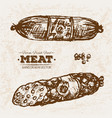 hand drawn sketch steak meat products set vector image