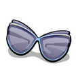 modern womens fashionable sunglasses isolated on vector image