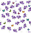 purple iris flowers vector image vector image