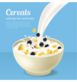 realistic detailed 3d cereals oatmeal breakfast in vector image