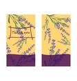 Set invitation cards with flower frame Lavender vector image vector image