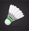 shuttlecock for badminton from bird feathers vector image