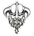 viking graphic image vector image