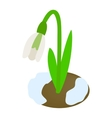 White snowdrop icon isometric 3d style vector image vector image