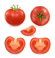 3d realistic different tomato icon set vector image vector image