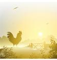 Cockerel Rooster vector image