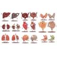 Human Internal Organs Healthy Vs Unhealthy Set Of vector image vector image