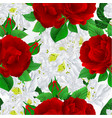 seamless texture white rhododendron and roses vector image vector image