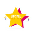 special offer sale star price label vector image