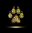 trail dog from a golden sequins vector image