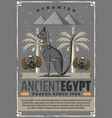 egypt culture travel cat and scarab symbols vector image vector image