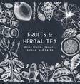 hand sketched herbal tea ingredients design on vector image vector image