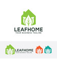 leaf home logo design vector image