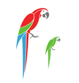 Macaw parrot and green parrot vector image vector image