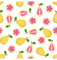 pattern with guava vector image vector image