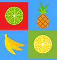 set of colored isolated mouth-watering fruits vector image