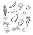 Sketch of fresh whole and sliced vegetables vector image vector image