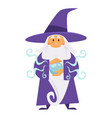 wizard or magician witchcraft and crystal ball vector image