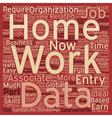 Work From Home Data Entry Jobs text background vector image vector image