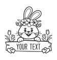 bunny split monogram face frame vector image vector image