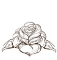 hand drawn rose floral design element outline vector image vector image