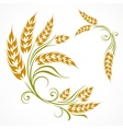 Stylized wheat pattern vector image vector image