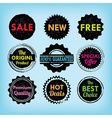 Set of black and colorful labels and badges set vector image