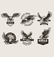 eagles emblem stylized logotypes and badges with vector image