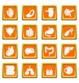 internal human organs icons set orange square vector image vector image