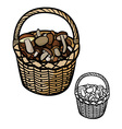 Mushrooms in Basket vector image vector image