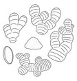 set of ginger vector image vector image