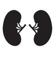 Kidney Icon Black vector image
