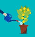 businessman hand watering money tree vector image