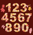 autumn numbers design vector image vector image