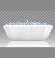 bathtub with soap bubbles vector image