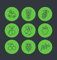 berries icons set in linear style vector image vector image