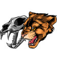 cougar panther head with skull vector image