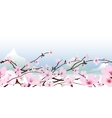 Delicate pink spring blossom vector image